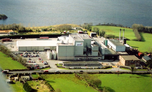 Glanbia Considering New €50 Million Dairy Plant