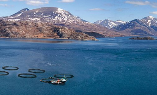 A UK First For Scottish Salmon Company
