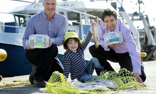Donegal Catch Supports Irish Fishing Industry With Responsible Irish Fish Partnership