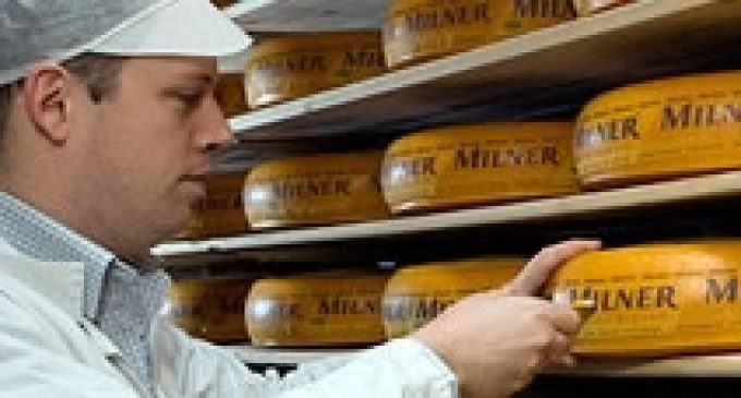 FrieslandCampina Broadens Cheese Portfolio With Acquisition of Zijerveld