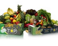 Total Produce Acquires 50% of The Fresh Connection