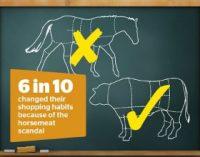 EU Takes Action Against Horsemeat Fraud
