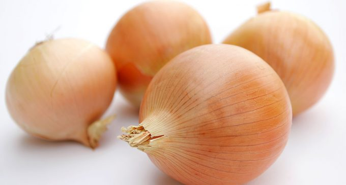 Organic Conditions Boost Flavonoids and Antioxidant Activity in Onions