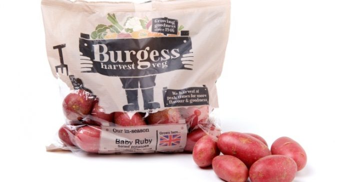 Produce World Launches Consumer-facing Brand