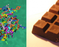 Protein chocolate: Sources, market and trends