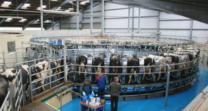 Environmental Report Demonstrates British Dairy Industry is a Global Leader