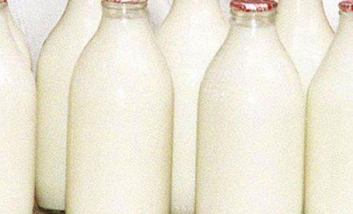 Tetra Pak chief: ambient flavoured milk sales soaring