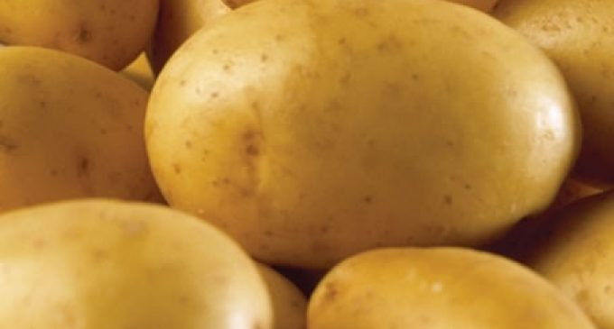 Industry cuts back on British potatoes as prices soar