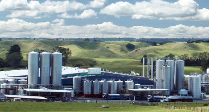 Contamination Crisis at Fonterra