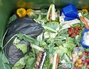 6183_removing-sell-by-dates-could-reduce-food-waste_content_Waste-Food-1