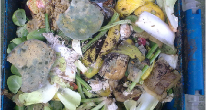 Innovation Can Turn Around Food Waste