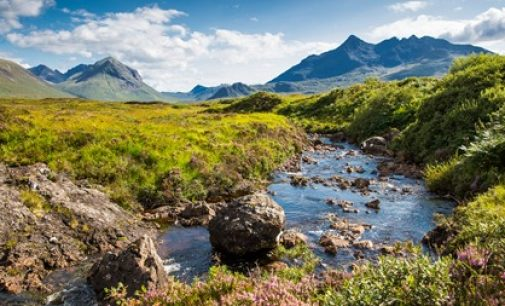 Scotch Whisky Industry Renews Commitment to Sustainability