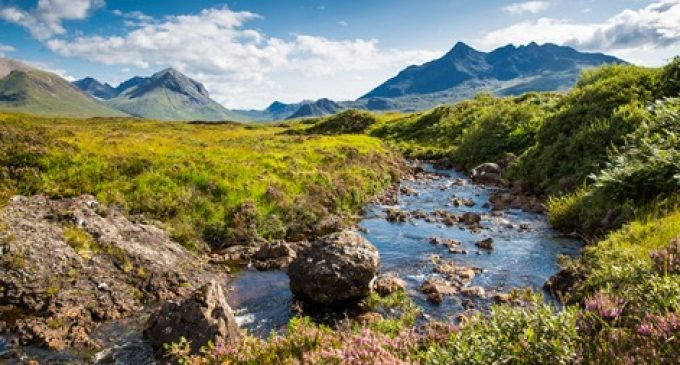 Scotch Whisky Industry Moves Closer to its Green Targets