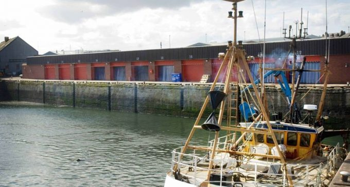 Star's Cool Performance Nets a 25% Energy Saving For Seafood Firm