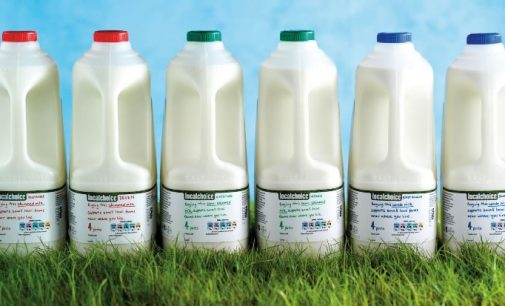 Tesco Expands Help For British Dairy Farmers