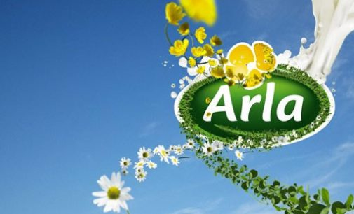 Arla Farmers Launch Initiative to Get British Bees Buzzing Again