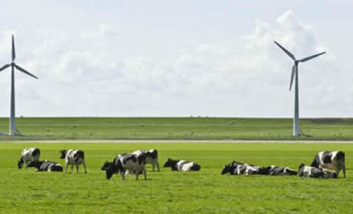 FrieslandCampina on Track With Corporate Responsibility and Sustainability Targets