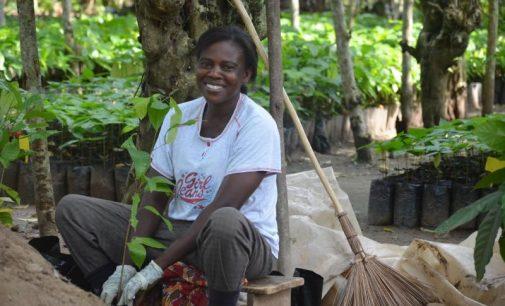 Mondelez International's Cocoa Life Program Unveils Third-Party Verification Framework