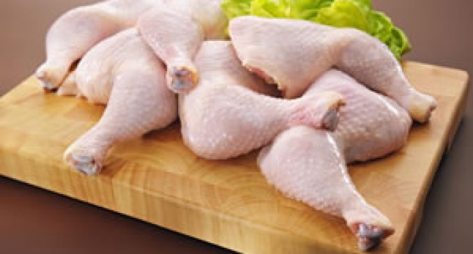 Can Poultry Combat the Campylobacter Threat?