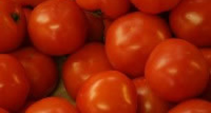 Ford and Heinz working together to develop waste tomato-based plastics