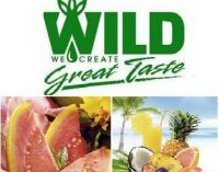 A new range of flavors: WILD providing the taste of summer