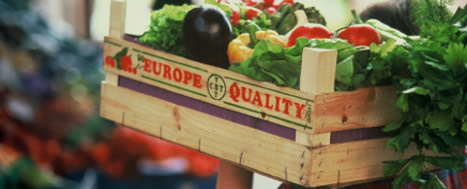 EU Agri-food Exports Start 2017 at High Level