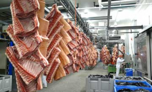Vion Invests in Bavarian Meat Plants