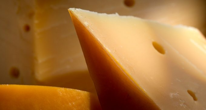 FrieslandCampina Reinforces Position in Italian Cheese and Butter Market