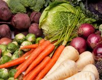 Sustainability is Not an 'Add-on' For Leading UK Vegetable Business
