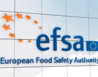 Novel Food, Traditional Food – EFSA Briefing on Draft Guidance Documents