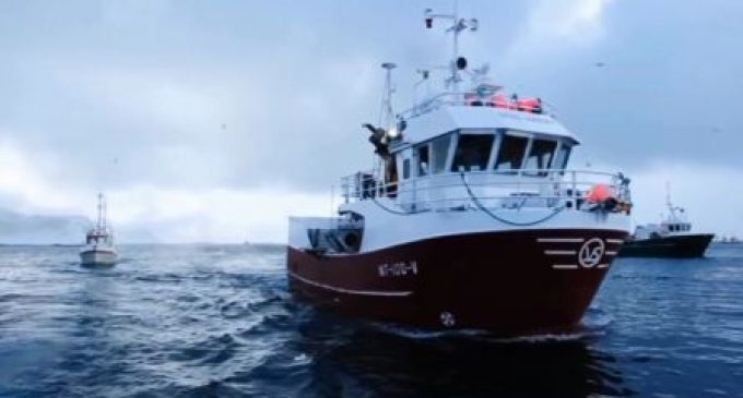Norwegian Seafood Council Advertises on UK TV For First Time