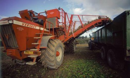 A Positive Future for the UK Beet Sugar Industry