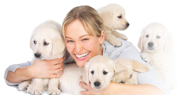 Leading European Pet Food Manufacturer Sold