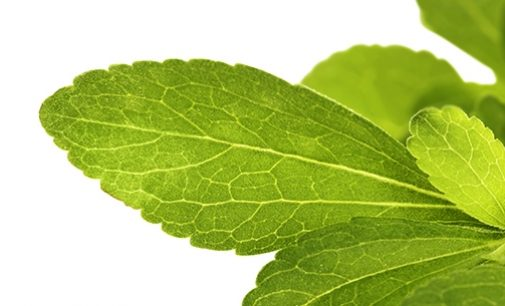 Opportunity to Increase Stevia Consumption in Germany