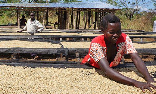 The Positive Cup – Nespresso Reports Sustainability Progress