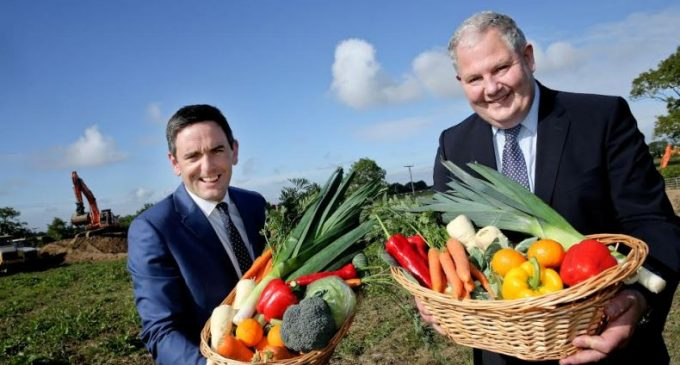 Ballymaguire Foods to Build New Plant