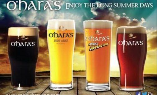 New Chairman at Irish Brewers Association