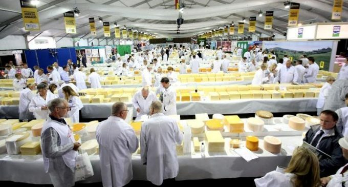 Glanbia Ingredients Ireland Cheddars Win Top Awards at Prestigious Cheese Competition