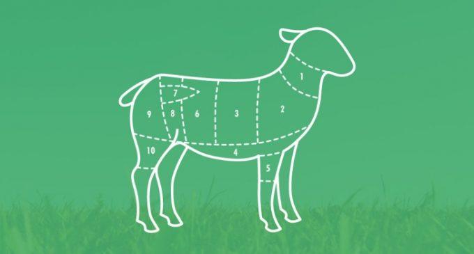 Irish Consumers Appreciate the Role of Lamb Production to Rural Ireland