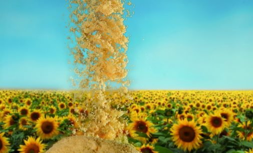 Sternchemie presents broad range of sunflower lecithins