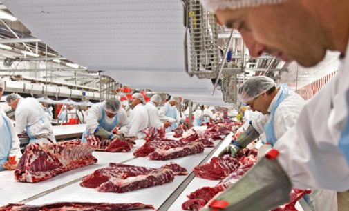 'Crisis' – New Report Shows Brexit Impact on Europe's Meat Industry