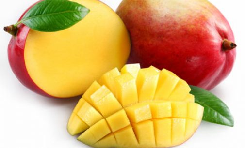 Human study: Mango boosts microcirculation process