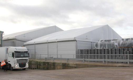 Greenvale Ramps Up Storage to Meet Christmas Potato Rush
