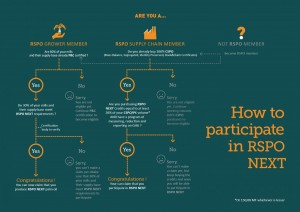How to participate in RSPO NEXT