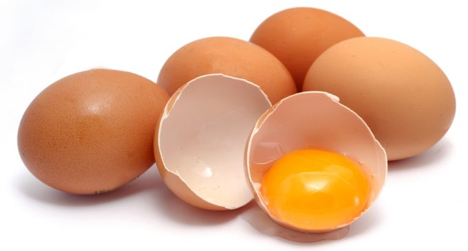 Kerry Offers Solution to Rising Egg Prices Woes For European Confectionery Manufacturers