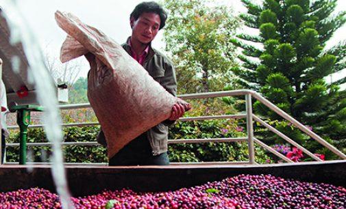 Nescafé Coffee Centre Opens in China
