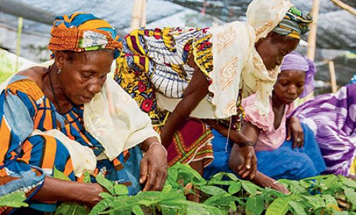 Nestlé Empowers One Million Women in Farming