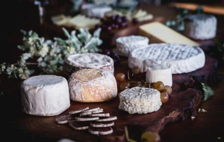 Emmi Strengthens its Position in US Speciality Cheese Market