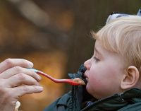UK Sales of Wet and Dry Baby Food in Decline