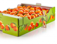 Fruit Stays Fresh For Longer in Corrugated Trays